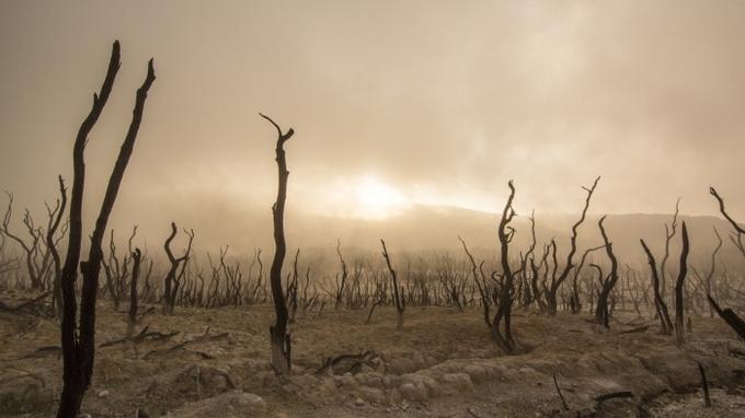 Slavná věštkyně varovala před katastrofou: Popsala, jak bude vypadat poslední den lidstva